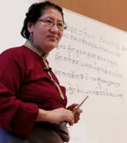 网络传统藏医训练 2019年2月12日